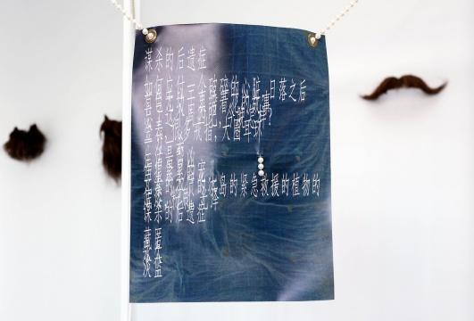 童义欣 《梅齐薻的煤气灶(节选)》假珍珠 纸上及乙烯基面料喷墨打印 2015