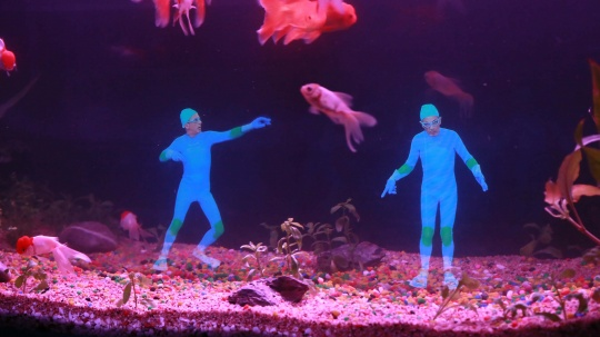 《水中嬉戏》全息投影装置 2010 第3版 (2)