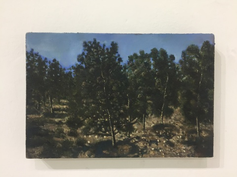 《铜版》 20×30cm 布面油画 2017