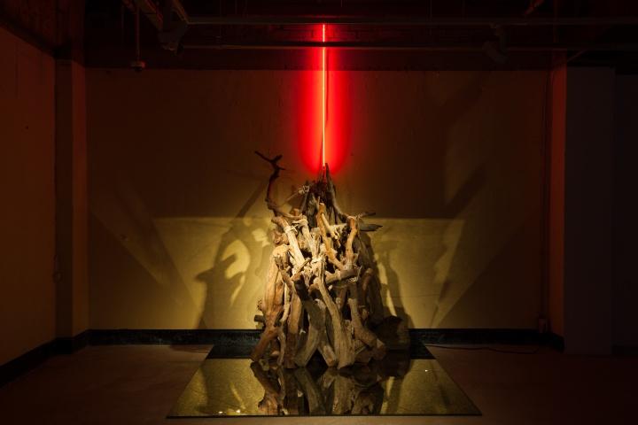 《浮木》180x180cm、135x95x160cm龙眼树枝、镜面玻璃、绳子、工业霓虹灯2016
