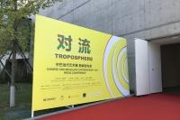 """中巴当代艺术展12月北京民生现代美术馆开幕,中国巴西艺术""""对流"""""""