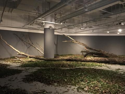 杨淞《艮-3》140×230×159cm 雕塑 2016
