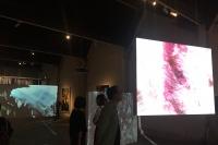 """美国艺术家马特·桑德斯中国首展亮相油罐 手工""""摄影师""""的别出心裁"""