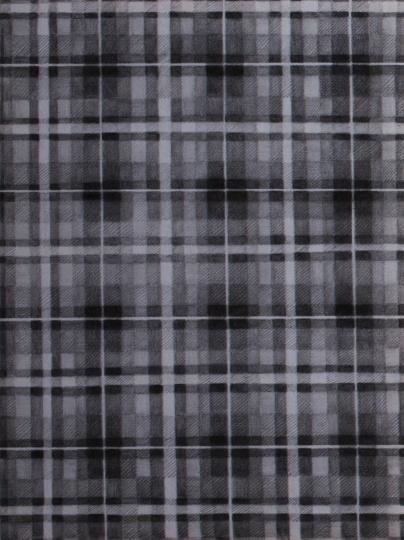 《一块布》80×60cm 铅笔毛毡2013