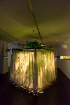娜布其作品《下过雨的傍晚……倾斜的阳光……大小不一的光斑……退去,……被冲刷……蜿蜒延伸……终点,尖利的汽车鸣笛声……消失了》(局部)
