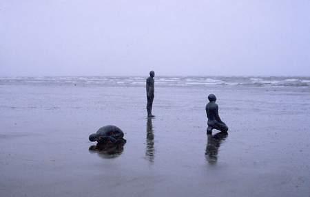 1977-1979创作《陆地、海洋和空气》,为之后一系列作品的雏形  1979开始职业艺术家生涯