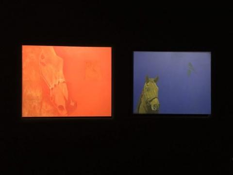 黑希克苏伦《圣赫尔》110 × 140cm 布面油画 2017    《野马》130 × 160cm 布面油画 2017