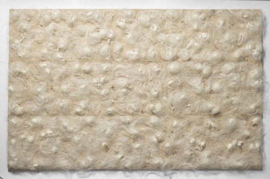 《蛾》 33x170cm x3 纸 绢 生丝 蚕茧 2017
