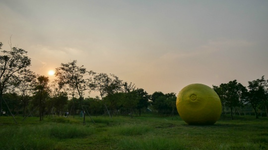 现场展出周启涵作品《Lemon》