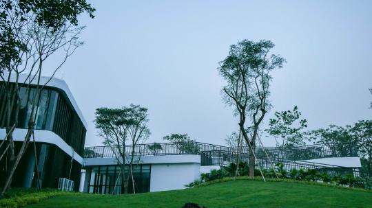 当代艺术在顺德 华侨城盒子美术馆正式开馆