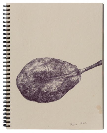 《梨子》 27×20.5cm 纸本圆珠笔 2016