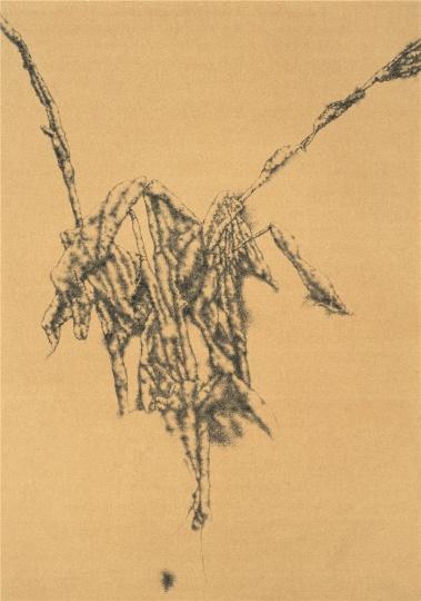 《美人蕉》 72×51cm 纸本圆珠笔 2011
