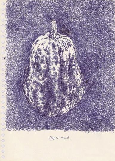 《小南瓜》 24.5×16.5cm 纸本圆珠笔 2012