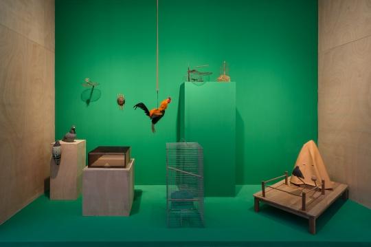 赵仁辉 《博物自然馆,批判性动物学家研究所 - 一部鸟的历史》 2017