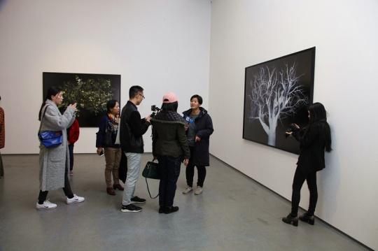 艺术家范西在展览现场