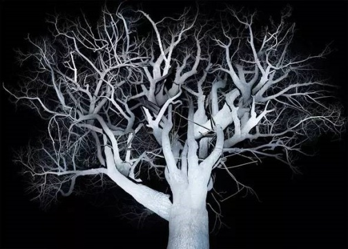 范西 《树2》 收藏级喷墨打印 160x224cm2014-2016