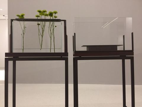 让花儿依次舒展的玻璃容器