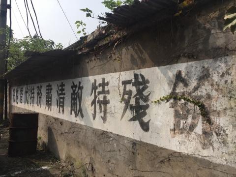 """首届""""中国合川·钓鱼城国际新媒体艺术节"""" 以""""重返""""为名激活历史与当代的对话"""