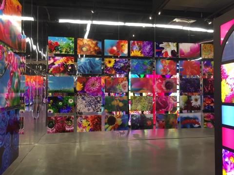 蜷川实花展现场花朵系列相关作品