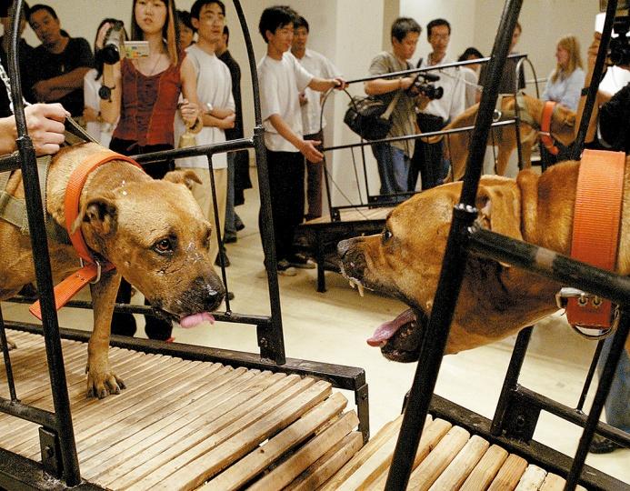 孙原&彭禹《犬勿近》 8条斗犬、8台无动力跑步机 2003