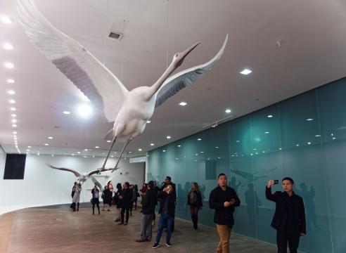 """「天人之际·蔡志松艺术展」开幕式现场,观众从""""起飞""""的仙鹤下走过"""
