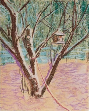 彼得·多伊格 《鸟屋》25 x 20cm 纸上蜡笔 1995  估价:60万 - 80万港元