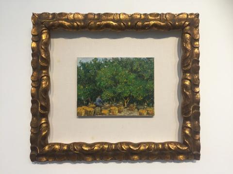 费以复 《收获脐橙》25×33cm木板油画