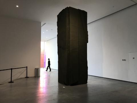 刘韡《丛林 No.10》470×145×25cm ×2帆布,木头 2012