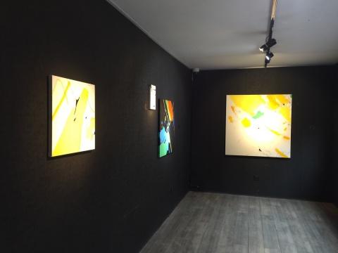 展览现场展出的朱佩鸿作品
