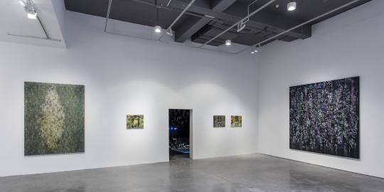杰拉尔丁·哈维尔 | 畏惧·怀疑·探寻·希望·幻梦 现场©️Artist and Arario Gallery; Photo: JJYPHOTO