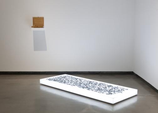 胡昀 《命》48x29x3cm 木头、盐 2016  胡昀 《薄如纸》201.5 × 80.5 × 12cm 中文印刷机铅 字、灯箱 2015