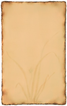 《观兰》192cm×122cm 布面油画 2015