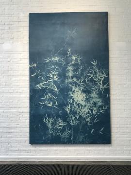 张大力 《竹子 No. 3》330 X 200 cm 亚麻布蓝晒 2015