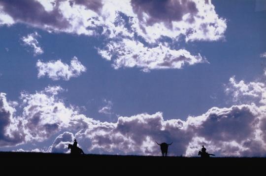 《忧郁牛仔》 150.5×211.5×5.1cm 4张照片均采用Ektacolor胶卷拍摄 1999  鸣谢艺术家和路易威登基金会,©Richard Prince