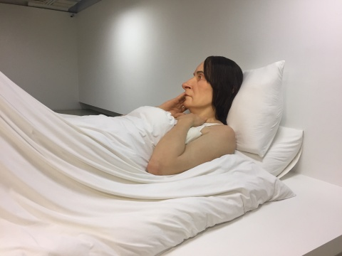 罗恩·穆克 《在床上》 162×650×395cm 混合媒材 2005