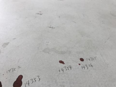 """程昱峥伪造出一种工作室的""""现场感"""",通过彩色铅笔对画室墙面的复制和对地面色点的统一标记(共标记了14356个点),他试图使得这些随机的痕迹变得重要,获得一种庄严感"""