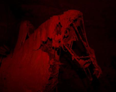 陈卓《荒蛮故事No.28 赤兔》 63.5x80cm 收藏级艺术微喷,哈内穆勒硫化钡 2013