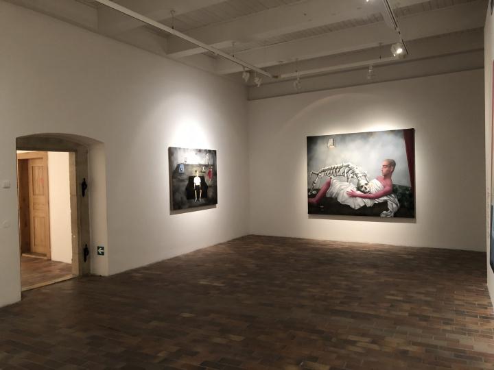 """2018年,捷克布拉格市立美术馆的""""重逢:诗与哲学——张晓刚、王广义艺术展""""现场"""