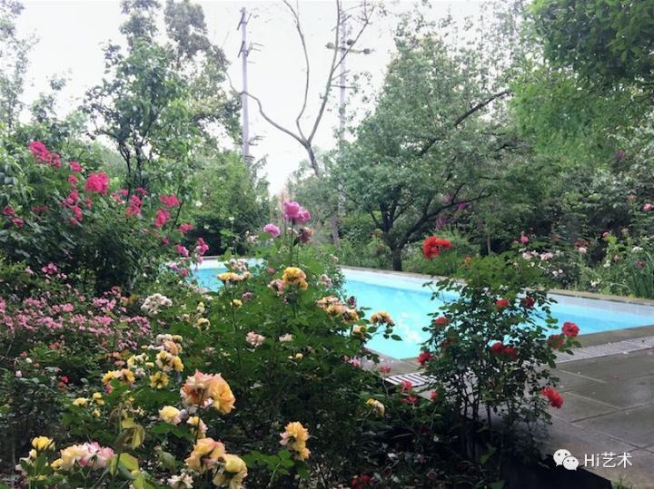 带泳池的花园