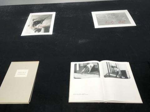 约瑟夫·博伊斯 《欧亚大陆》 影像 1968