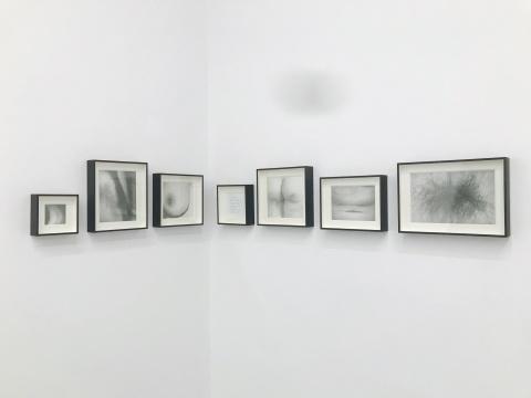 李欢毕业于中央美术学院版画系,这次展出这一系列作品都是关于身体的。很多都是局部的,如同被放大的单词。
