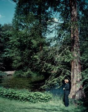 安德里亚斯·穆埃《在树下》159.3×129.7×4.5cm 激光冲印 2008