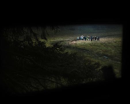 安德里亚斯·穆埃《森林之三》181.4×226.4×5.5cm 激光冲印 2016