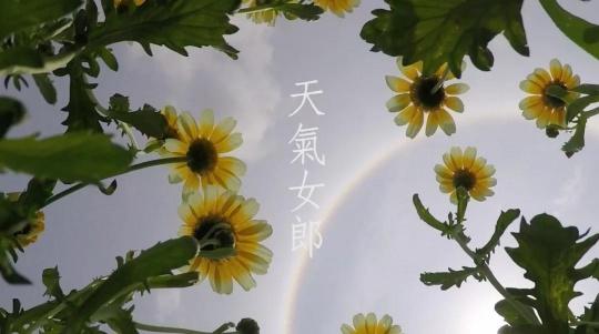 劳丽丽,《天气女郎—Halo Daisy》,单频道录像,彩色、粤语、英文字幕,6分33秒,2016,图片由艺术家提供