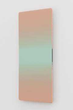 《全景2018-9 》 30×60cm 铝板上综合材料 2018