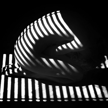 Stripes, Photography, Digital Print on plexiglass, 100x100cm, 2014, Mark - Moving Elephant