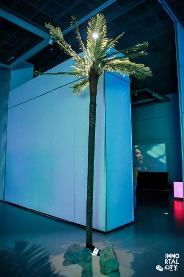 梁半 《海盗乌托邦》  椰子树下的Ipad中播放的视频是一名男子摇晃手机,从而使得树上的椰子掉落。原本椰子的掉落应该来自摇晃椰子树本身,而这一行为的紊乱直指当下社会网络与现实的错位。