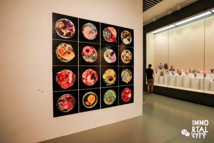 苏珊·安克 《暮光》《遥感》《蝶泳》《干细胞》《法典和纹理》《生物群》  终有一天作为观众的我们也会回归最原始的培养皿的形式。