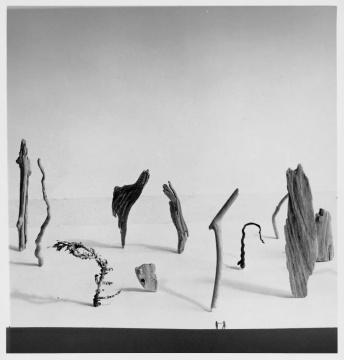 植田正治,《小小的漂流者们》,1948年