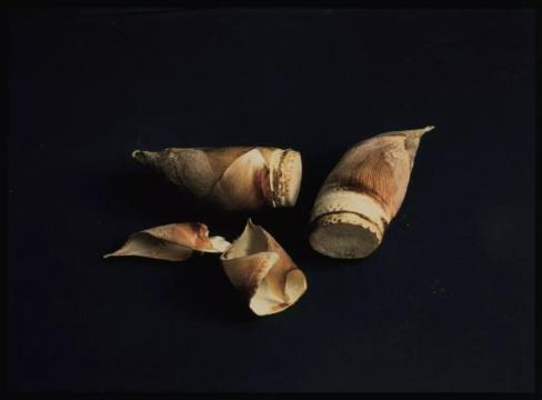 植田正治,选自《幻视游间》系列,1987-1992年
